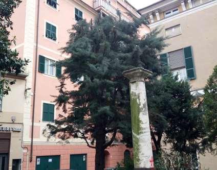 Appartamento Vendita Genova Ge Sampierdarena Via Carpaneto Sampierdarena